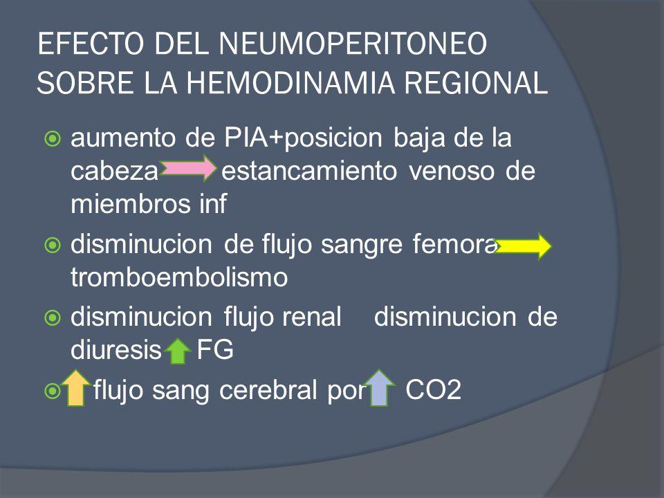 EFECTO DEL NEUMOPERITONEO SOBRE LA HEMODINAMIA REGIONAL