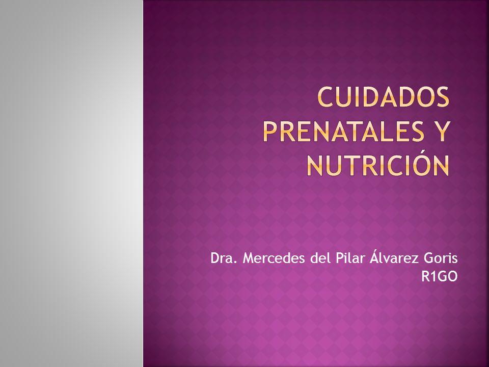 Cuidados prenatales y nutrición