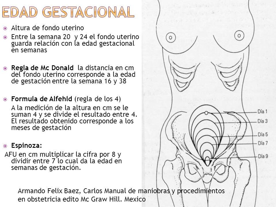 Edad gestacional Altura de fondo uterino