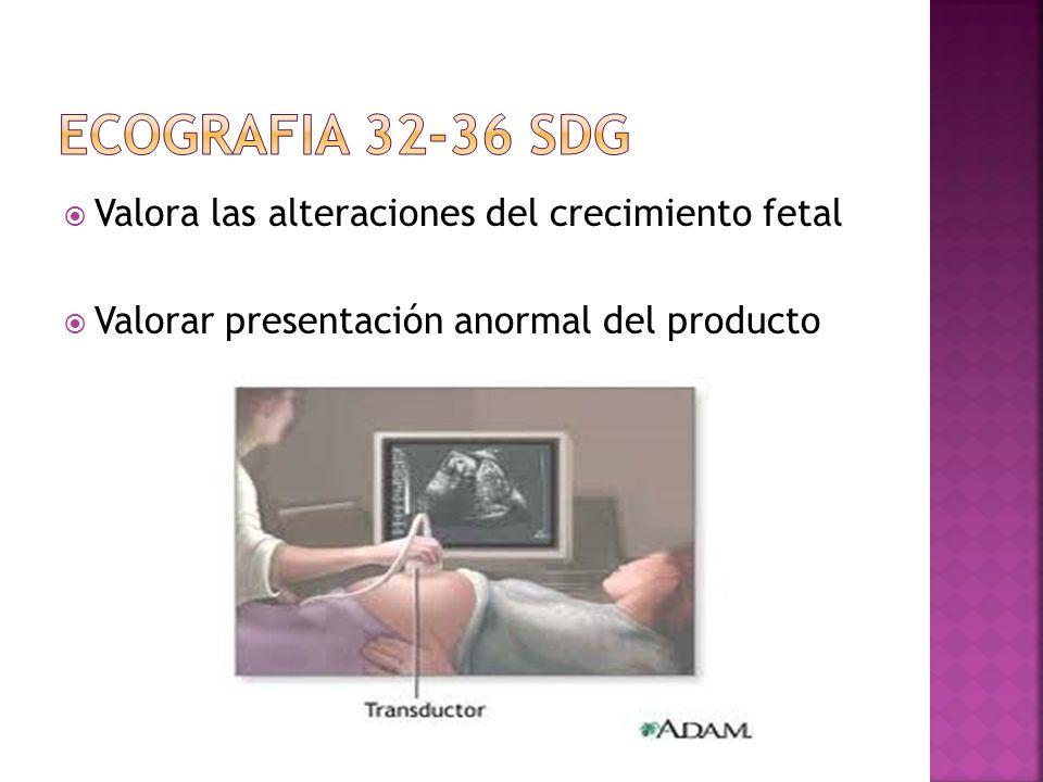 ECOGRAFIA 32-36 SDG Valora las alteraciones del crecimiento fetal