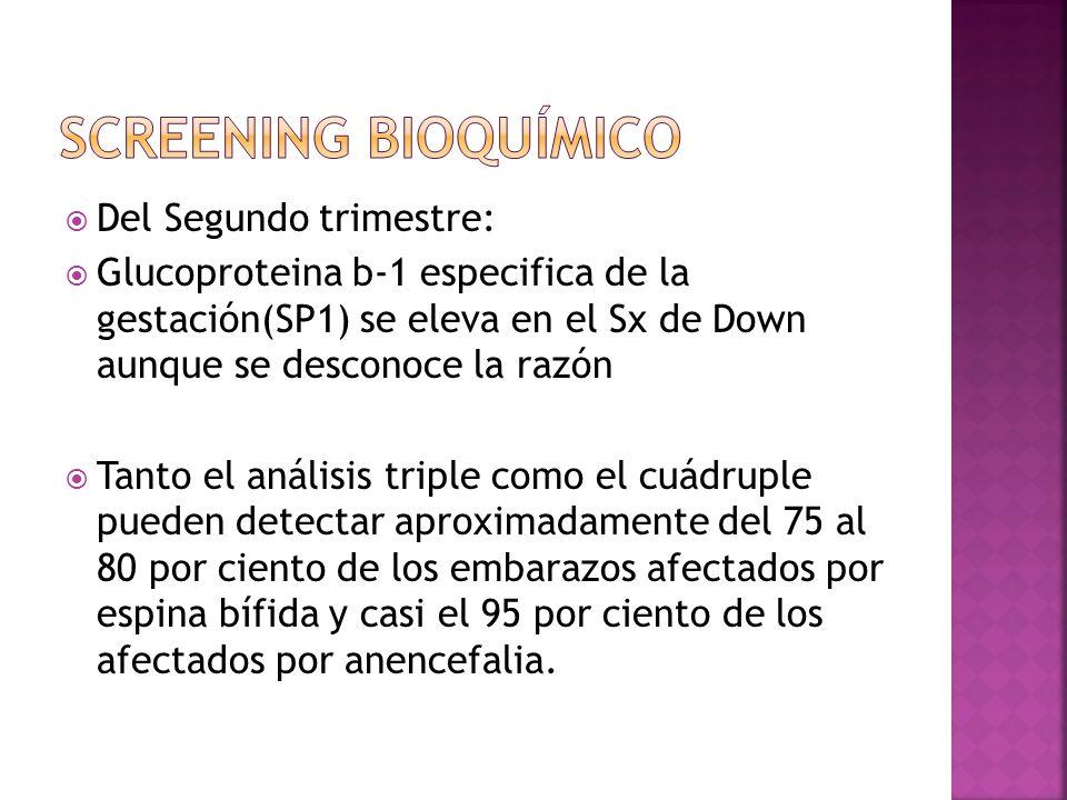 Screening bioquímico Del Segundo trimestre:
