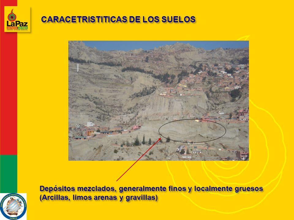 CARACETRISTITICAS DE LOS SUELOS