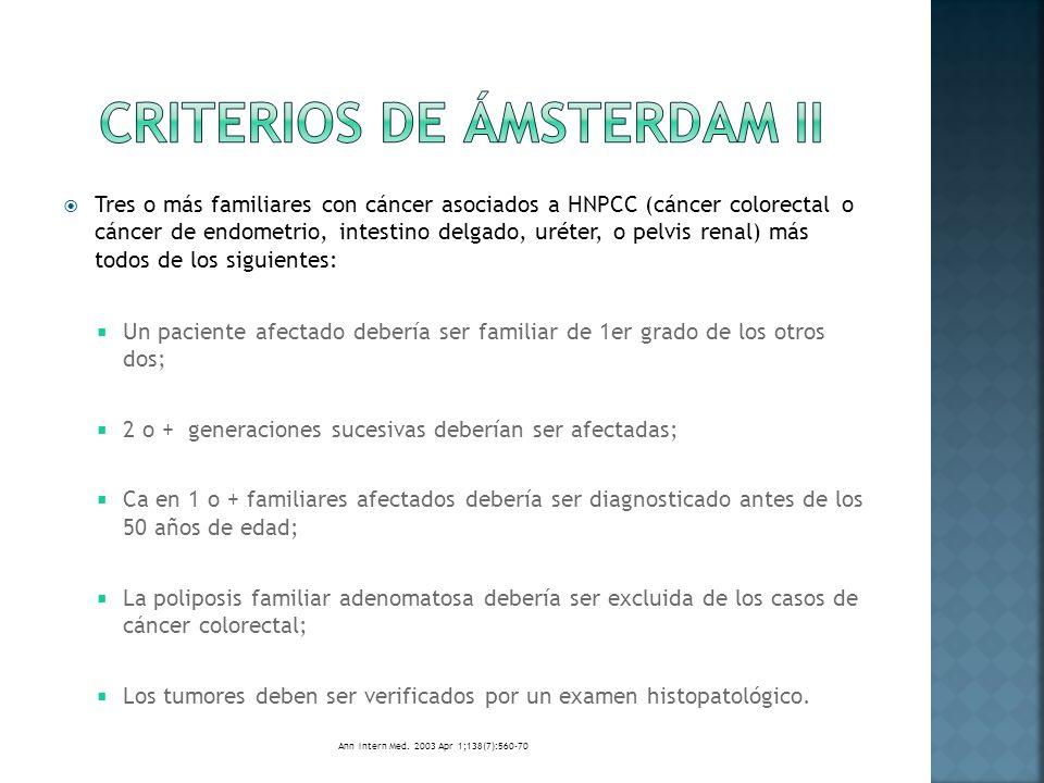 Criterios de Ámsterdam II