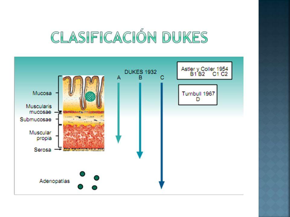 Clasificación dukes