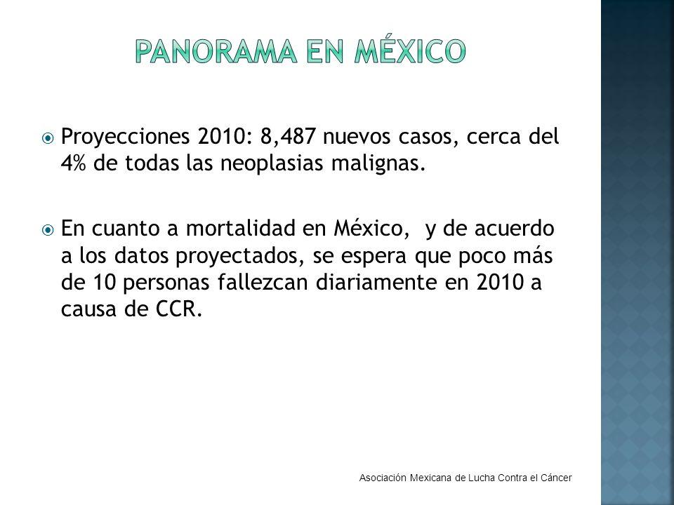 PANORAMA EN MÉXICO Proyecciones 2010: 8,487 nuevos casos, cerca del 4% de todas las neoplasias malignas.