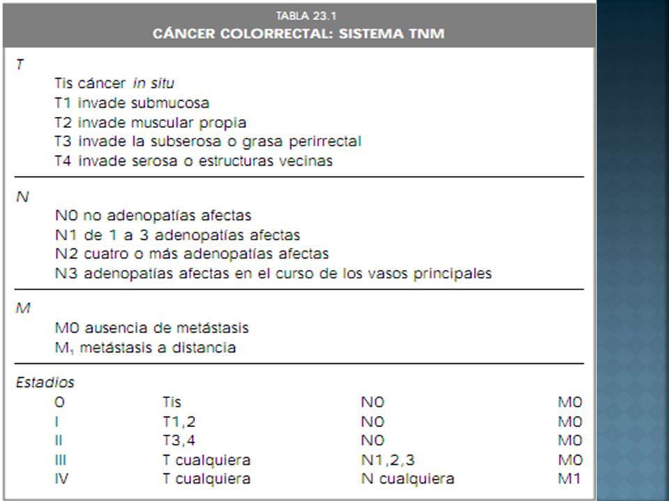 Tx: No hay descripción de la extensión del tumor debido a una información incompleta.