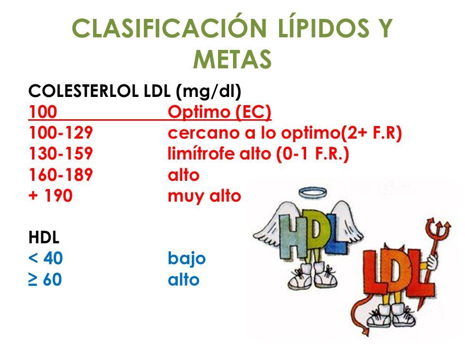 CLASIFICACIÓN LÍPIDOS Y METAS
