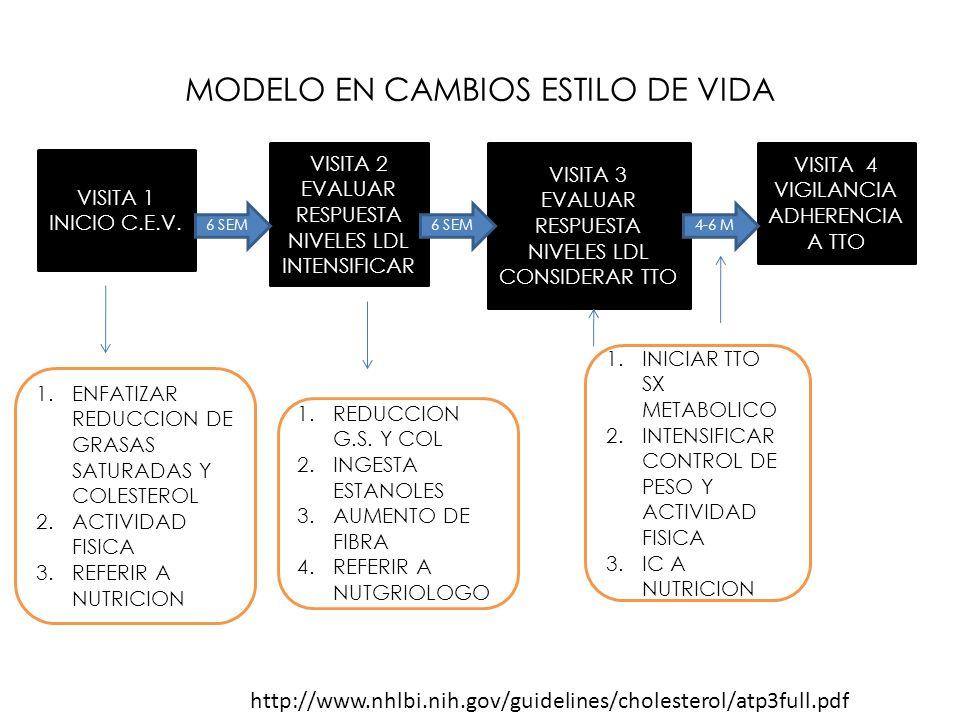 MODELO EN CAMBIOS ESTILO DE VIDA