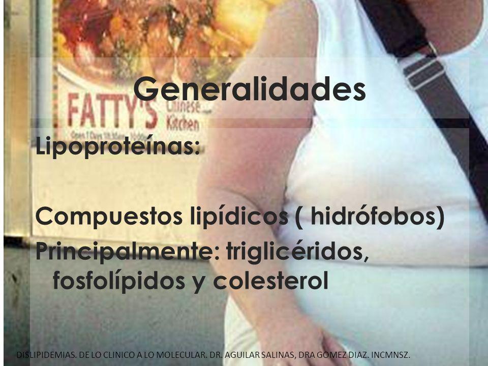 Generalidades Lipoproteínas: Compuestos lipídicos ( hidrófobos) Principalmente: triglicéridos, fosfolípidos y colesterol