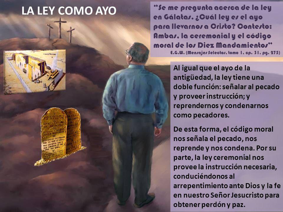 LA LEY COMO AYO