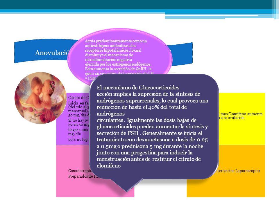 Anovulación Infertilidad y deseo gestacional