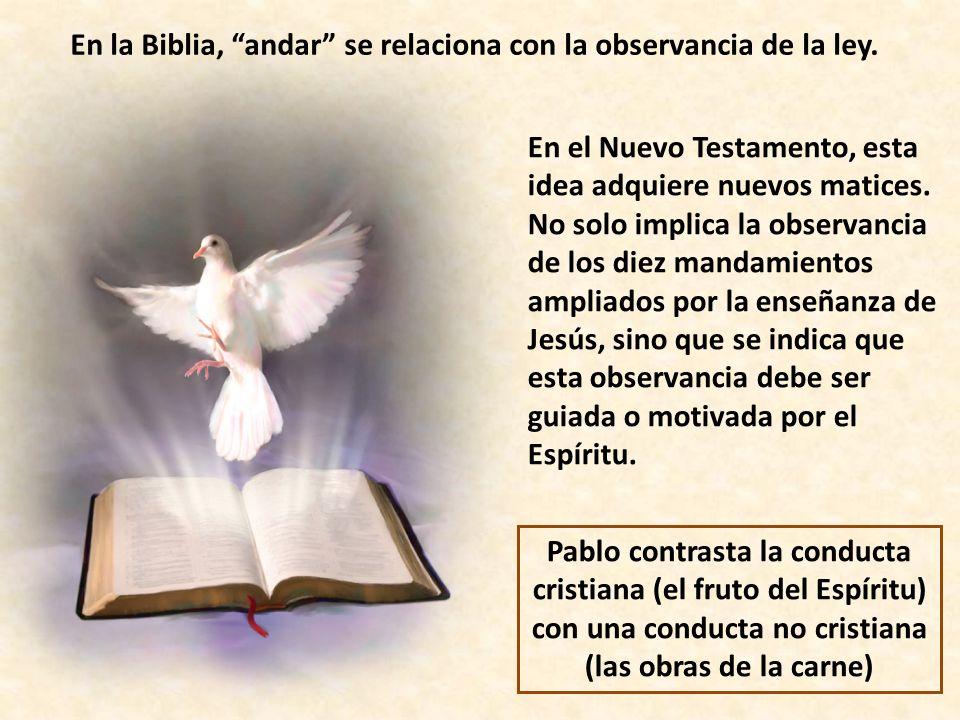 En la Biblia, andar se relaciona con la observancia de la ley.