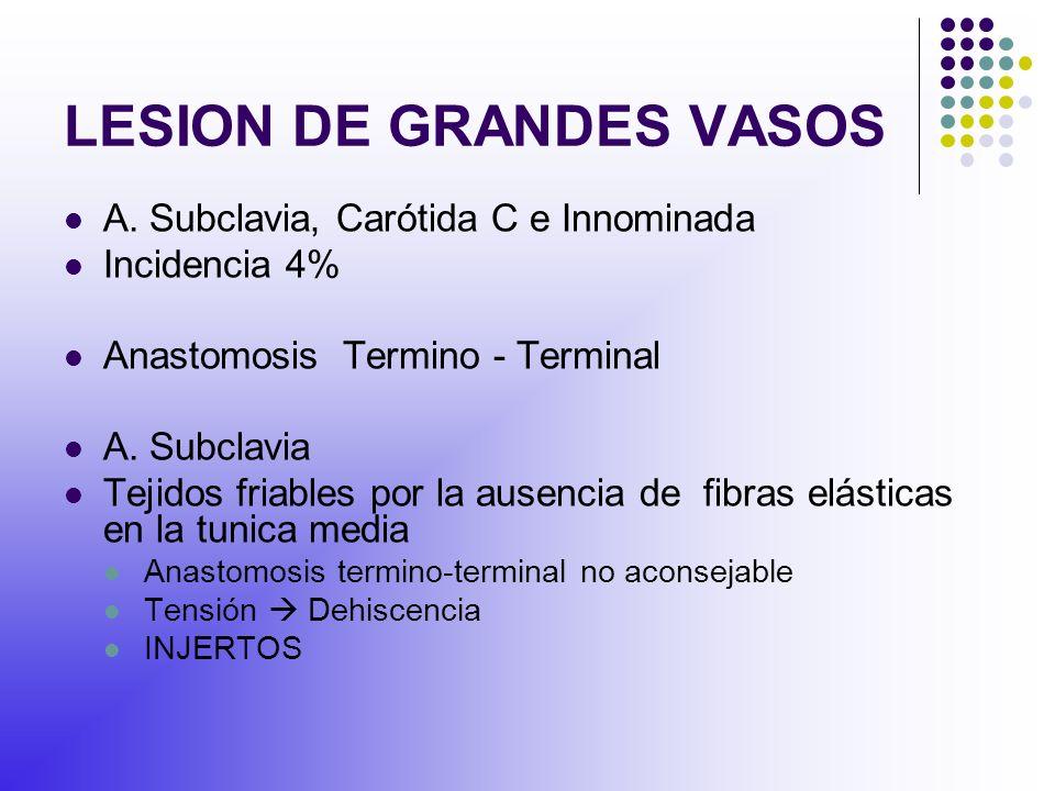 LESION DE GRANDES VASOS