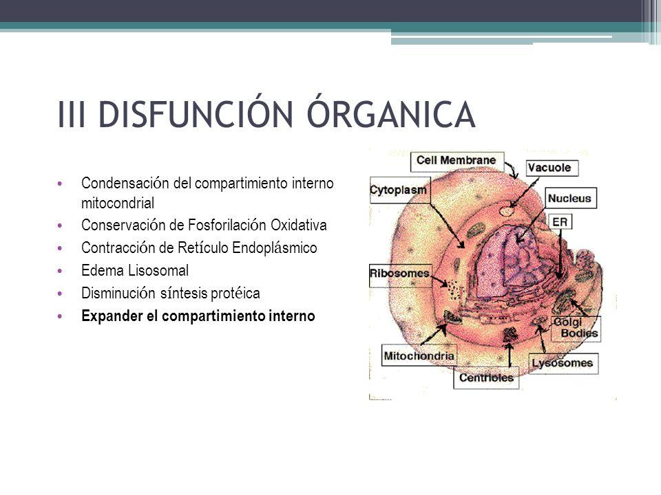 III DISFUNCIÓN ÓRGANICA