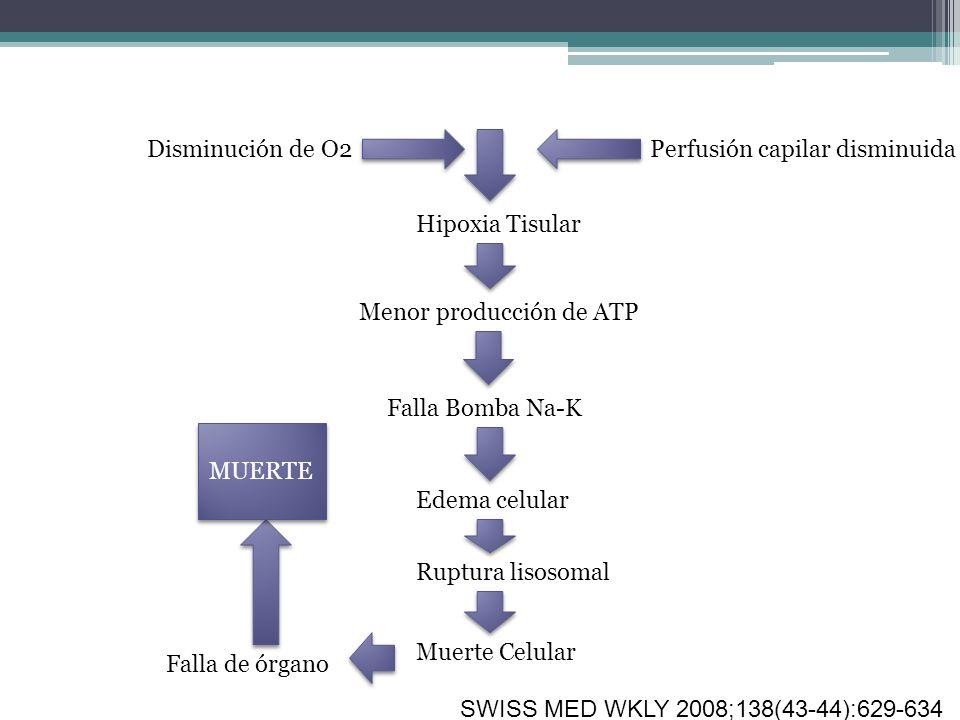 Disminución de O2 Perfusión capilar disminuida. Hipoxia Tisular. Menor producción de ATP. Falla Bomba Na-K.