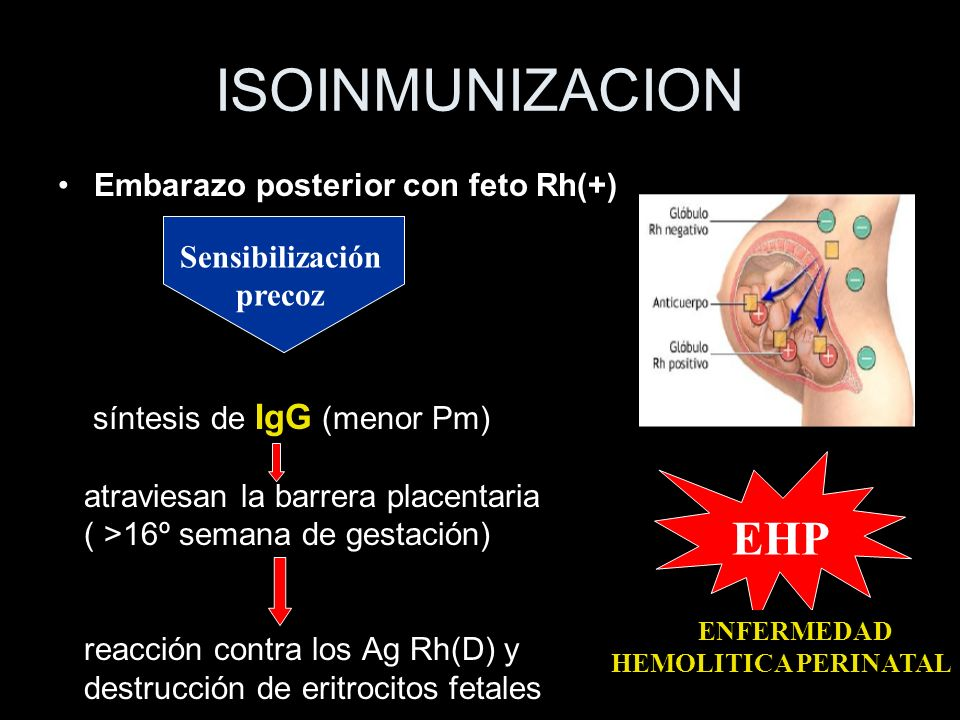 ISOINMUNIZACION EHP Embarazo posterior con feto Rh(+) Sensibilización