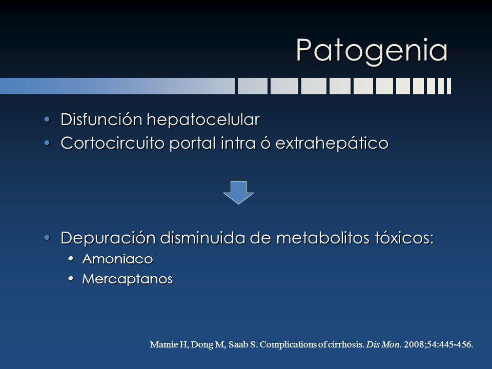 Patogenia Disfunción hepatocelular