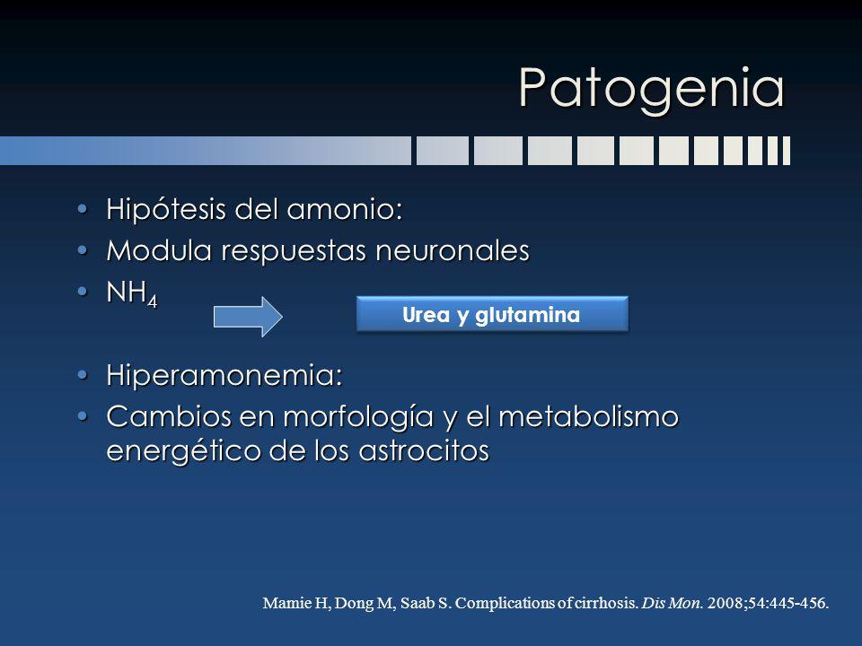 Patogenia Hipótesis del amonio: Modula respuestas neuronales NH4
