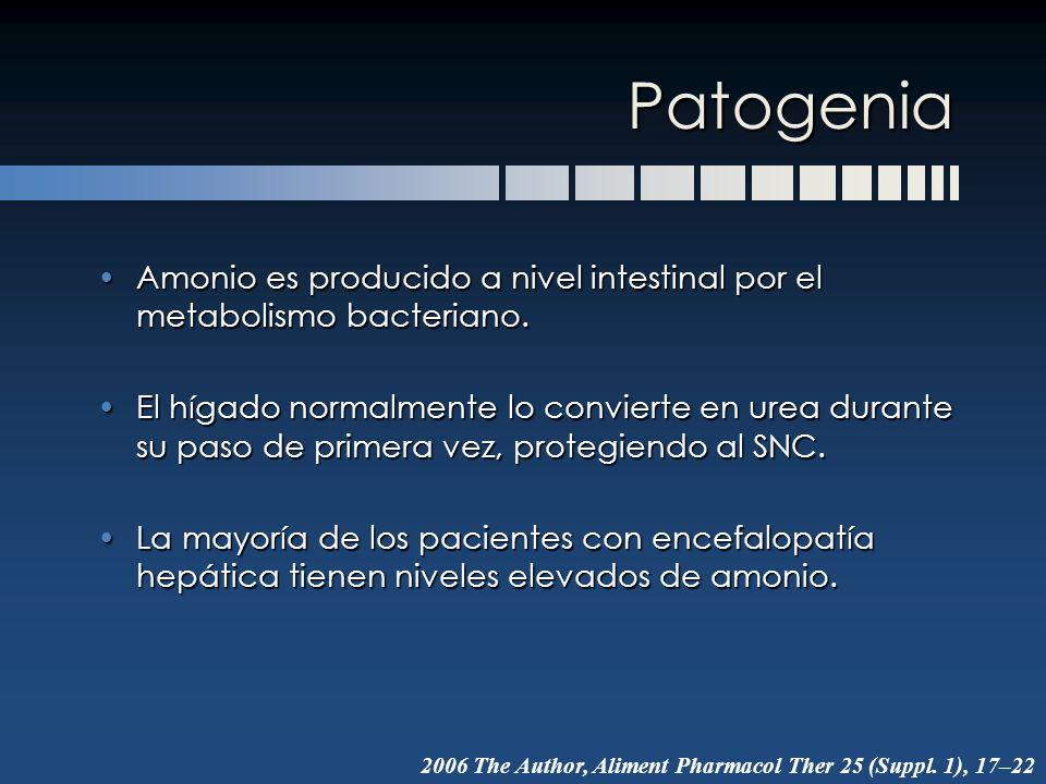 Patogenia Amonio es producido a nivel intestinal por el metabolismo bacteriano.
