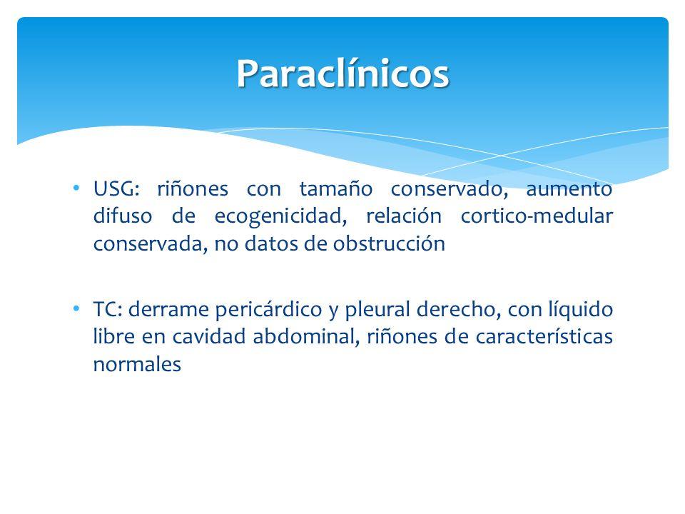 Paraclínicos USG: riñones con tamaño conservado, aumento difuso de ecogenicidad, relación cortico-medular conservada, no datos de obstrucción.