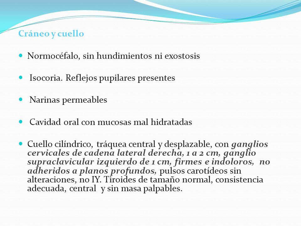 Cráneo y cuelloNormocéfalo, sin hundimientos ni exostosis. Isocoria. Reflejos pupilares presentes. Narinas permeables.