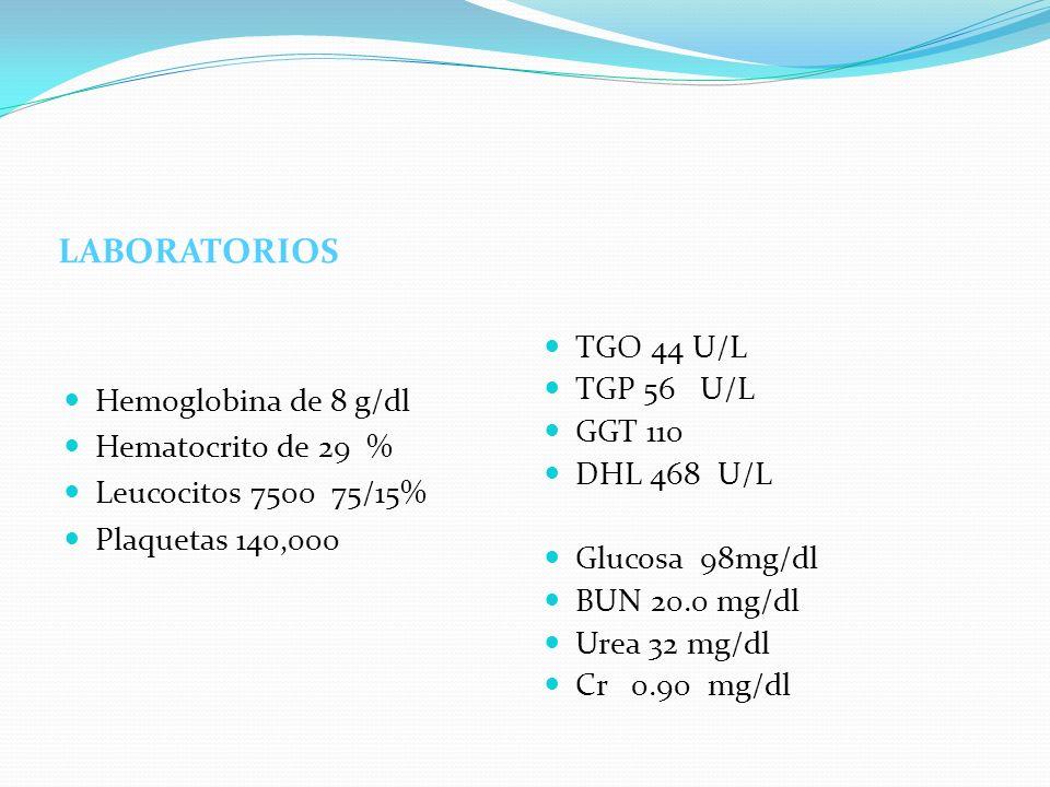 LABORATORIOS TGO 44 U/L TGP 56 U/L Hemoglobina de 8 g/dl GGT 110