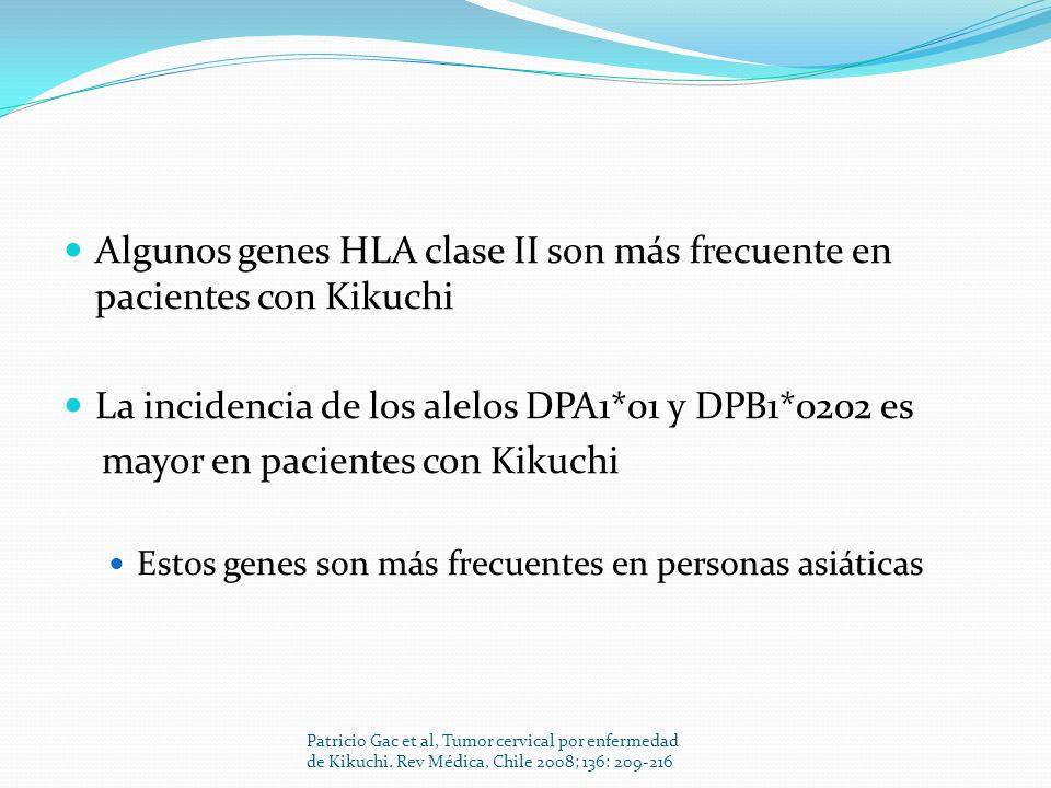 Algunos genes HLA clase II son más frecuente en pacientes con Kikuchi