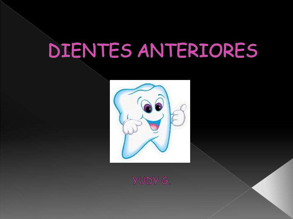 DIENTES ANTERIORES YUDY G.
