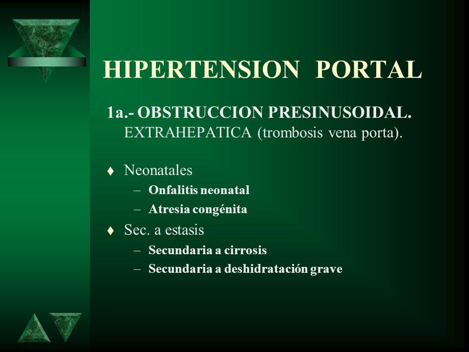HIPERTENSION PORTAL 1a.- OBSTRUCCION PRESINUSOIDAL. EXTRAHEPATICA (trombosis vena porta). Neonatales.