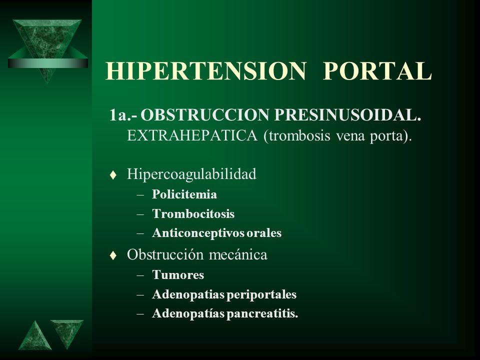 HIPERTENSION PORTAL 1a.- OBSTRUCCION PRESINUSOIDAL. EXTRAHEPATICA (trombosis vena porta). Hipercoagulabilidad.