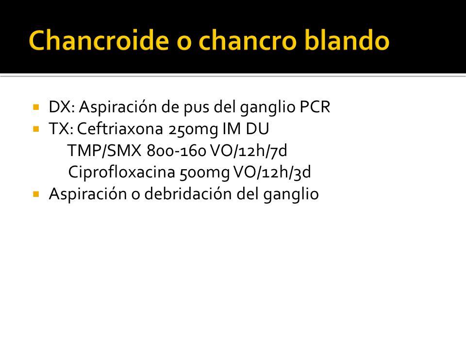 Chancroide o chancro blando