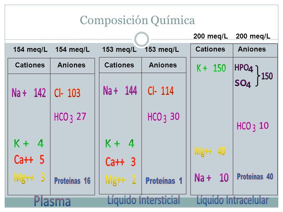 K + 150 HPO 4 150 so 4 Na + 144 Na + 142 HCO HCO HCO K + 4 K + 4