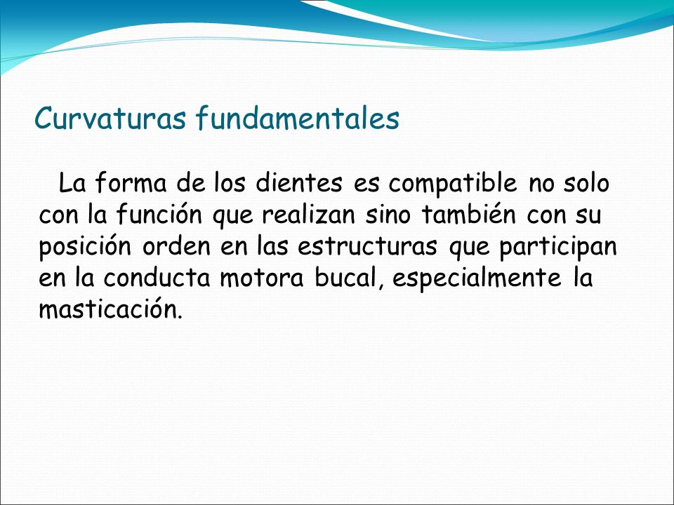 Curvaturas fundamentales