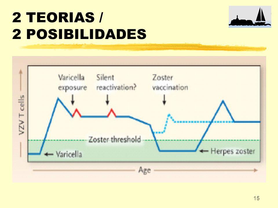 2 TEORIAS / 2 POSIBILIDADES