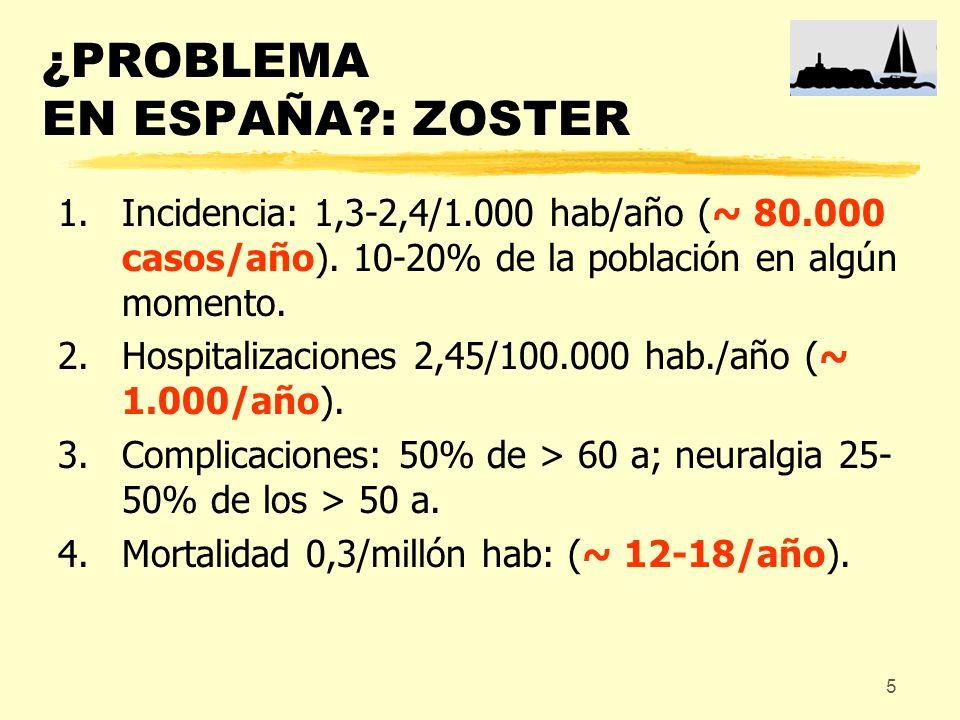 ¿PROBLEMA EN ESPAÑA : ZOSTER