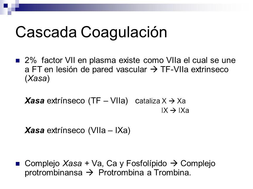 Cascada Coagulación 2% factor VII en plasma existe como VIIa el cual se une a FT en lesión de pared vascular  TF-VIIa extrinseco (Xasa)