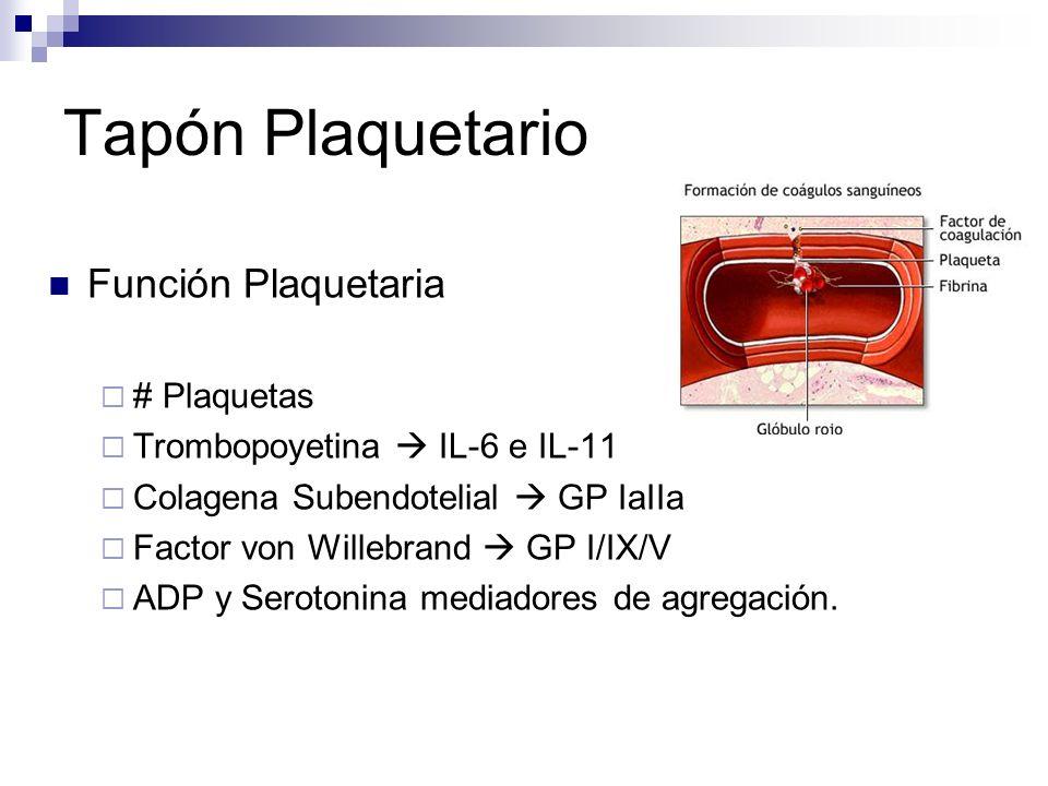 Tapón Plaquetario Función Plaquetaria # Plaquetas