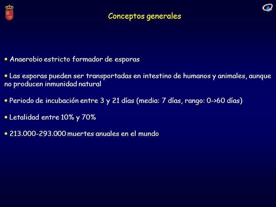 Conceptos generales  Anaerobio estricto formador de esporas