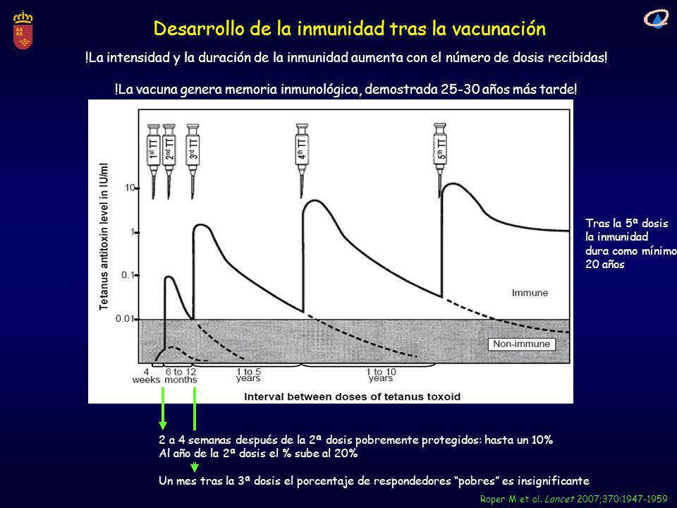Desarrollo de la inmunidad tras la vacunación