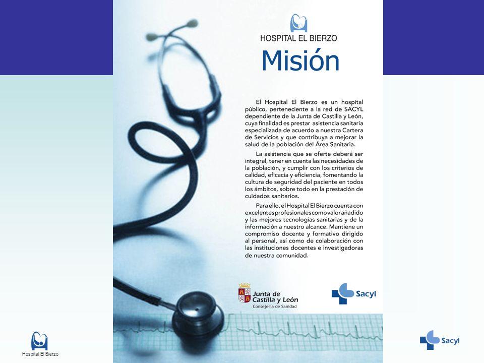 INTRODUCCIÓN Experiencia de una Unidad de gestión de riesgos. Hospital el Bierzo. 2010