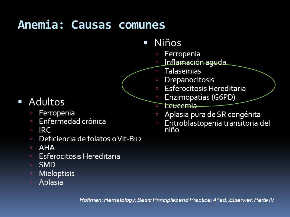 Anemia: Causas comunes