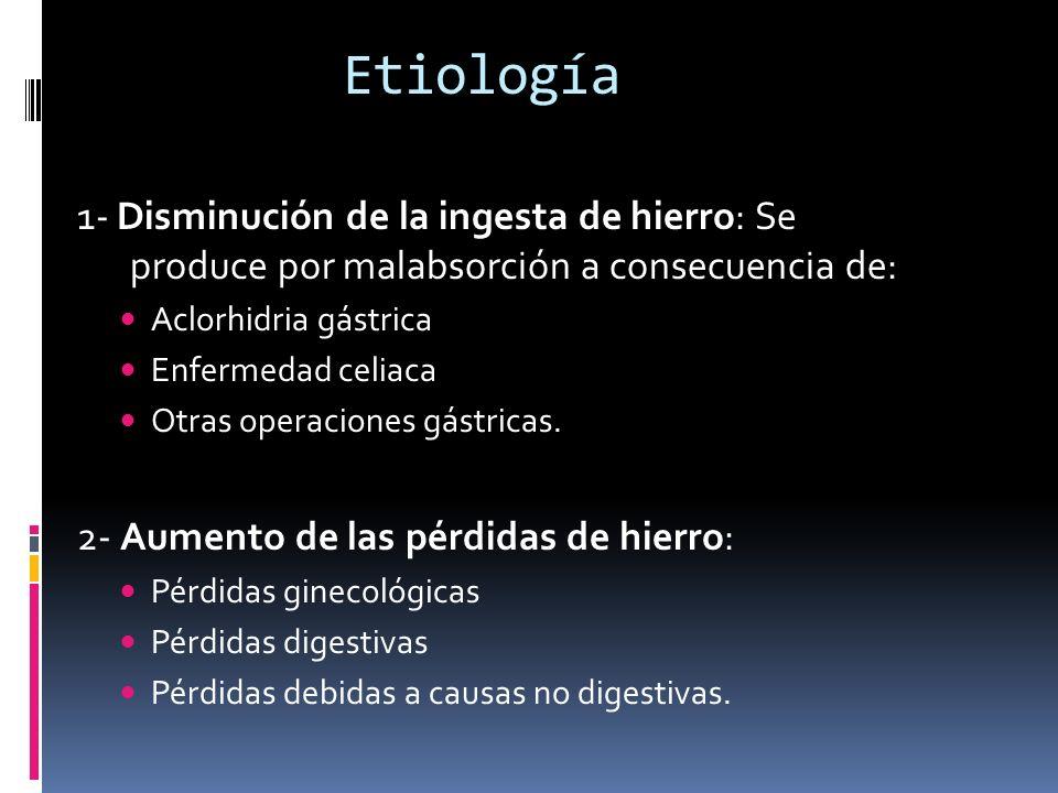 Etiología 1- Disminución de la ingesta de hierro: Se produce por malabsorción a consecuencia de: Aclorhidria gástrica.