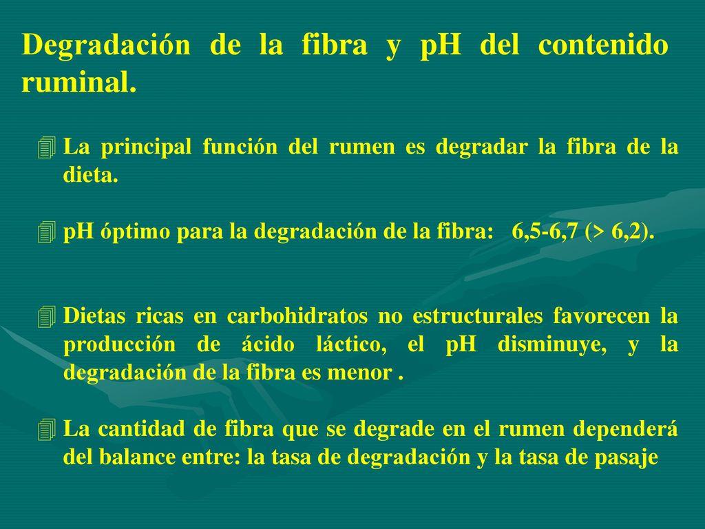 Contenidos alimentos consumo digestibilidad energ a - Cantidad de salfuman para bajar ph piscina ...
