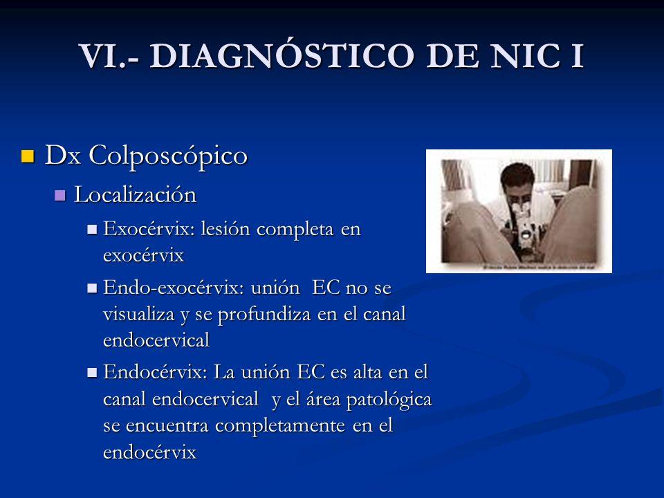 VI.- DIAGNÓSTICO DE NIC I