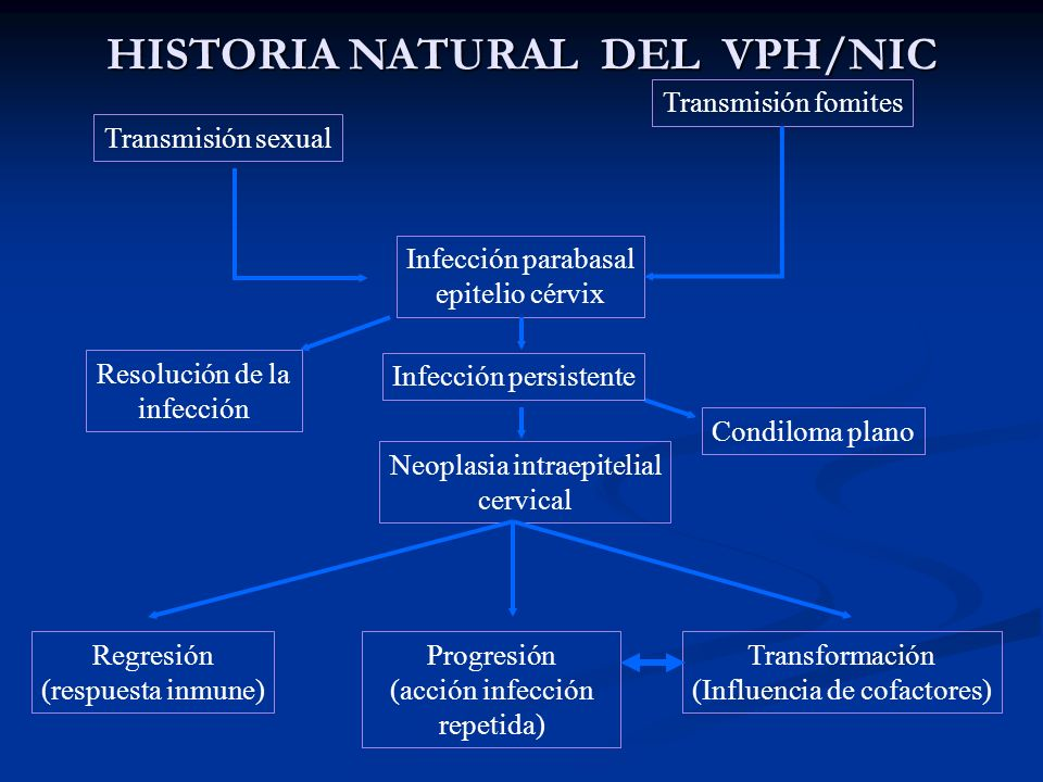 HISTORIA NATURAL DEL VPH/NIC
