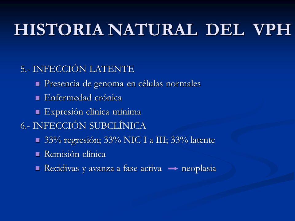 HISTORIA NATURAL DEL VPH