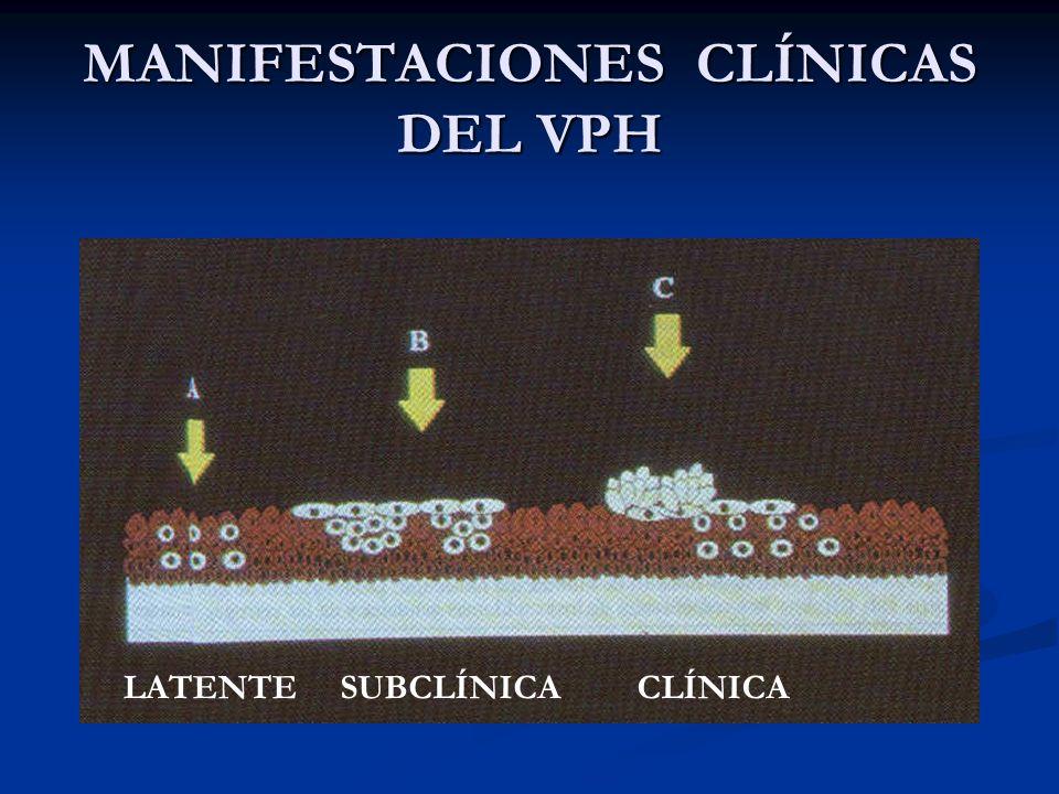 MANIFESTACIONES CLÍNICAS DEL VPH
