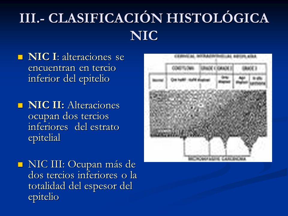 III.- CLASIFICACIÓN HISTOLÓGICA NIC