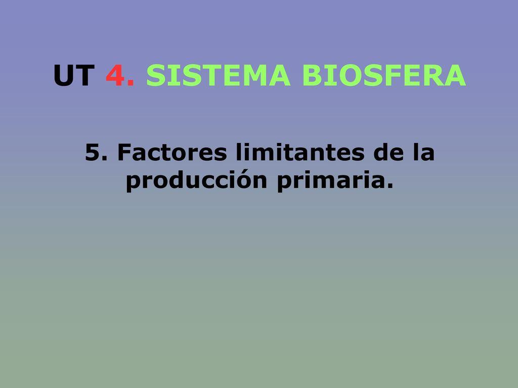 5. Factores limitantes de la producción primaria.