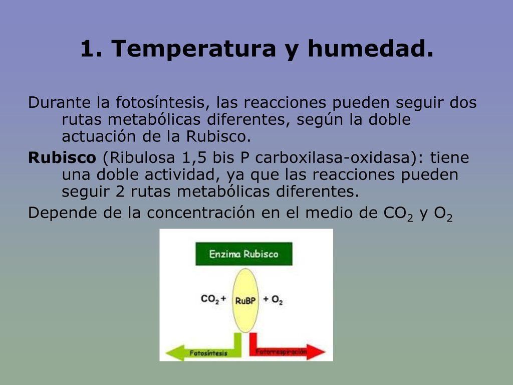 1. Temperatura y humedad.